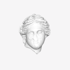 Download free 3D printer designs Veiled Head of a Woman at The Louvre, Paris, Louvre
