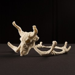 skulls_2_display_large.jpg Download free STL file Storied Skulls Crown and Tiara • 3D printer model, alterboy987