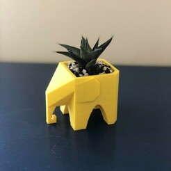 IMG_5320.jpg Download STL file Low poly Elephant Planter • 3D printing object, didilic