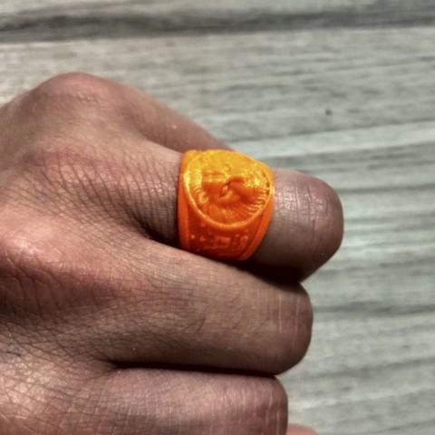 Download 3D printer model lion ring, lucasfernandesbos