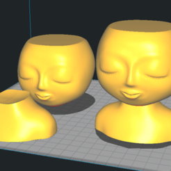 Maceta Mujer.png Descargar archivo STL Maceta Mujer para Modo Vasija / Vase Mode Woman Planter • Plan imprimible en 3D, estebanmeurat