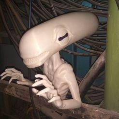 Free STL files Pale googly eyed alien, Odrivous