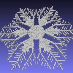 Download free 3D print files Snowflakes from Gravner-Griffeath simulation, arpruss