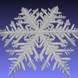 Free 3D model Snowflakes from Gravner-Griffeath simulation, arpruss