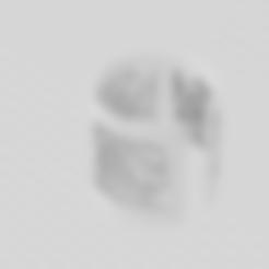 STL file FAKE HELIX earring, blackygoldcat