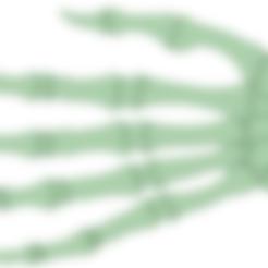 Télécharger fichier 3D Décoration du squelette des mains dizfraz, osval74