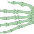 Download 3D print files Hands skeleton decoracion dizfraz, osval74