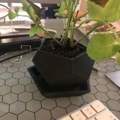 Download free 3D printing templates Flowerpot, hessevalentino
