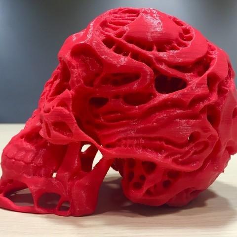 9d5ac40d445094e4217ac36431513cda_display_large.jpg Download free OBJ file Hunters - Hunter's Skull • 3D printable template, SYFY