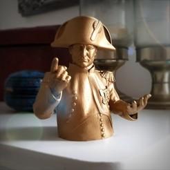 STL files Napoleon Bust., Alphonse_Marcel