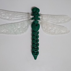 IMG_20201117_193403582.jpg Download free STL file Dragonfly • Template to 3D print, ericrin59