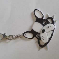20200420_165210.jpg Télécharger fichier STL Porte clef bouledogue Français avec collier  • Design imprimable en 3D, fmtlem
