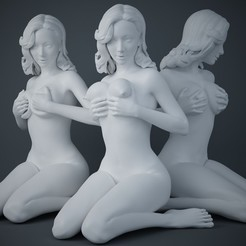 Download 3D printer templates Woman holding breasts collection, XXY2018