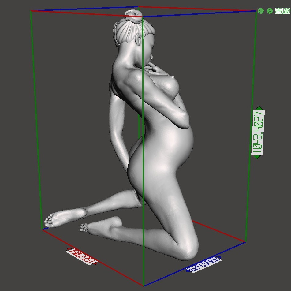 Sexy pregnant woman preview 007.jpg Download STL file Sexy pregnant woman • 3D printable object, XXY2018