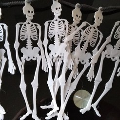 Download free STL files Skeleton Buntings, 3DME
