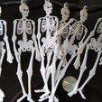 Download free STL files Skeleton Buntings, 3DME