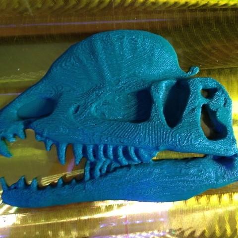 Descargar modelos 3D gratis Placa de Dilofosaurio, gabutoillegna56