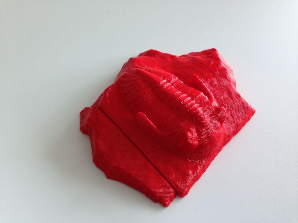 red_split_display_large.jpg Télécharger fichier STL gratuit Trilobite (P149623) • Plan pour impression 3D, MuseumVictoria