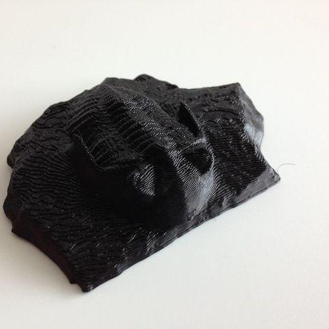 Black_Flat_Trilobite_display_large.jpg Télécharger fichier STL gratuit Trilobite (P149623) • Plan pour impression 3D, MuseumVictoria