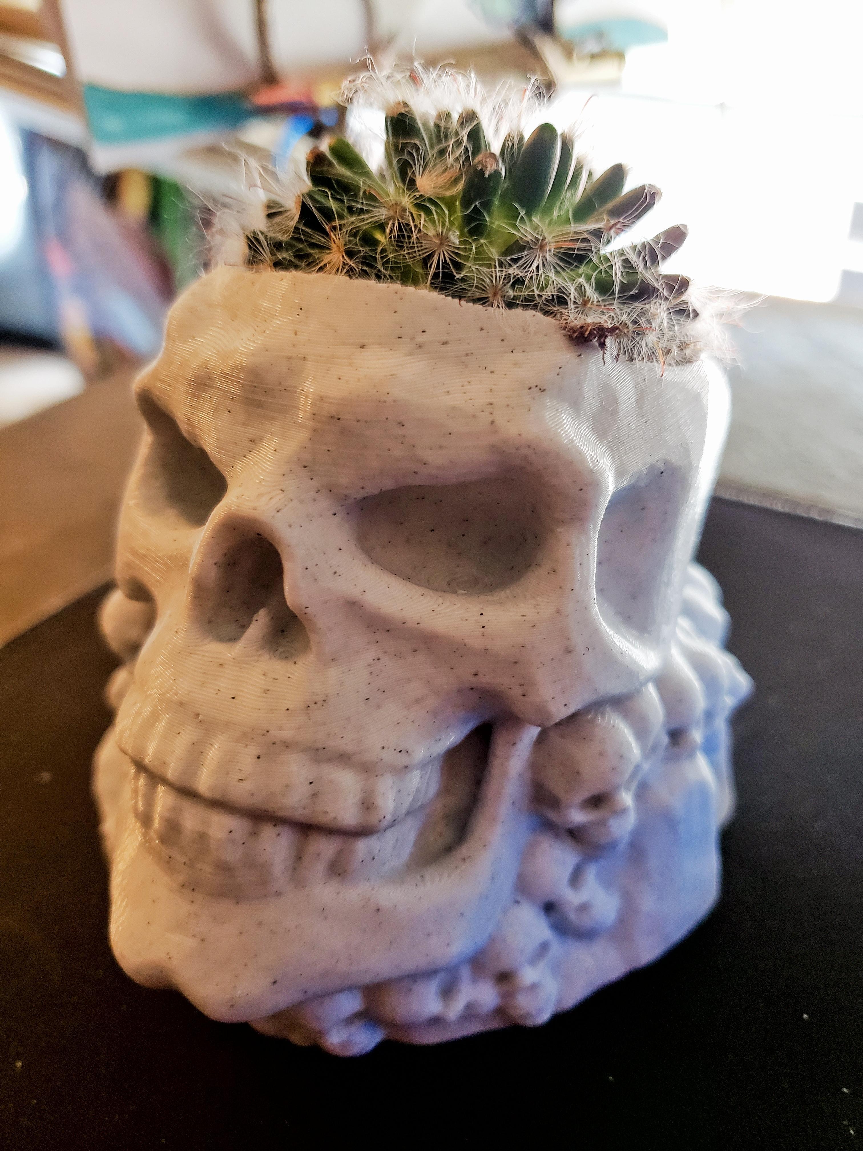 20200905_144521_01.jpg Download STL file skull pot • 3D printer design, drykill_23