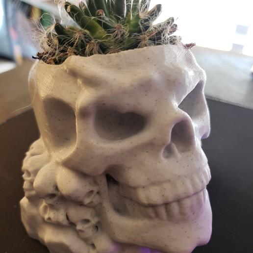 20200905_144727 (2).jpg Download STL file skull pot • 3D printer design, drykill_23
