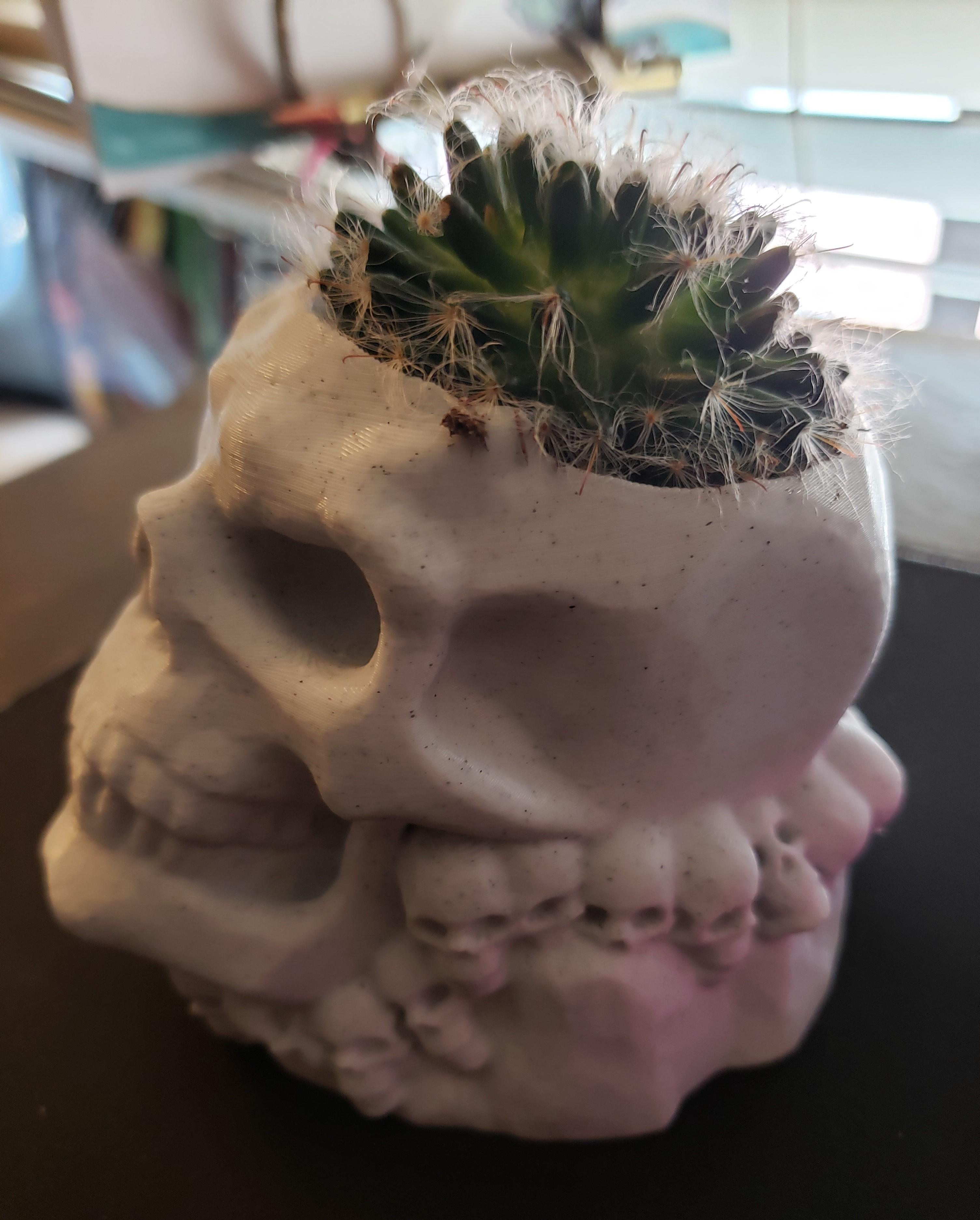 20200905_144649 (2).jpg Download STL file skull pot • 3D printer design, drykill_23