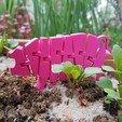 Télécharger fichier 3D gratuit Cochon articulé Flexi, jtronics
