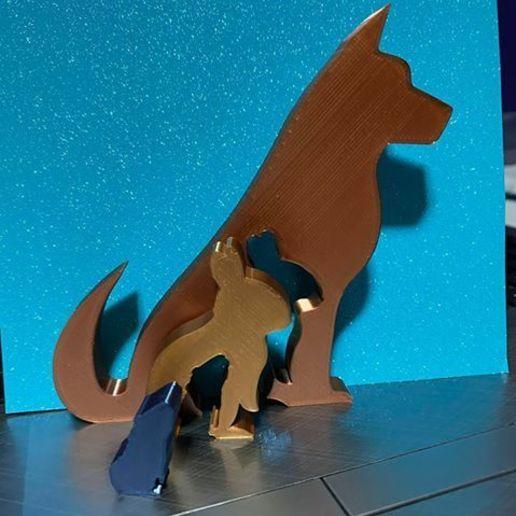 Télécharger fichier STL gratuit Silhouette de l'animal - Chien Lapin Cochon d'Inde • Modèle pour imprimante 3D, jtronics