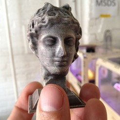 Free 3D printer files Marble Head of a Youth (A.D. 117-161), enzordplst