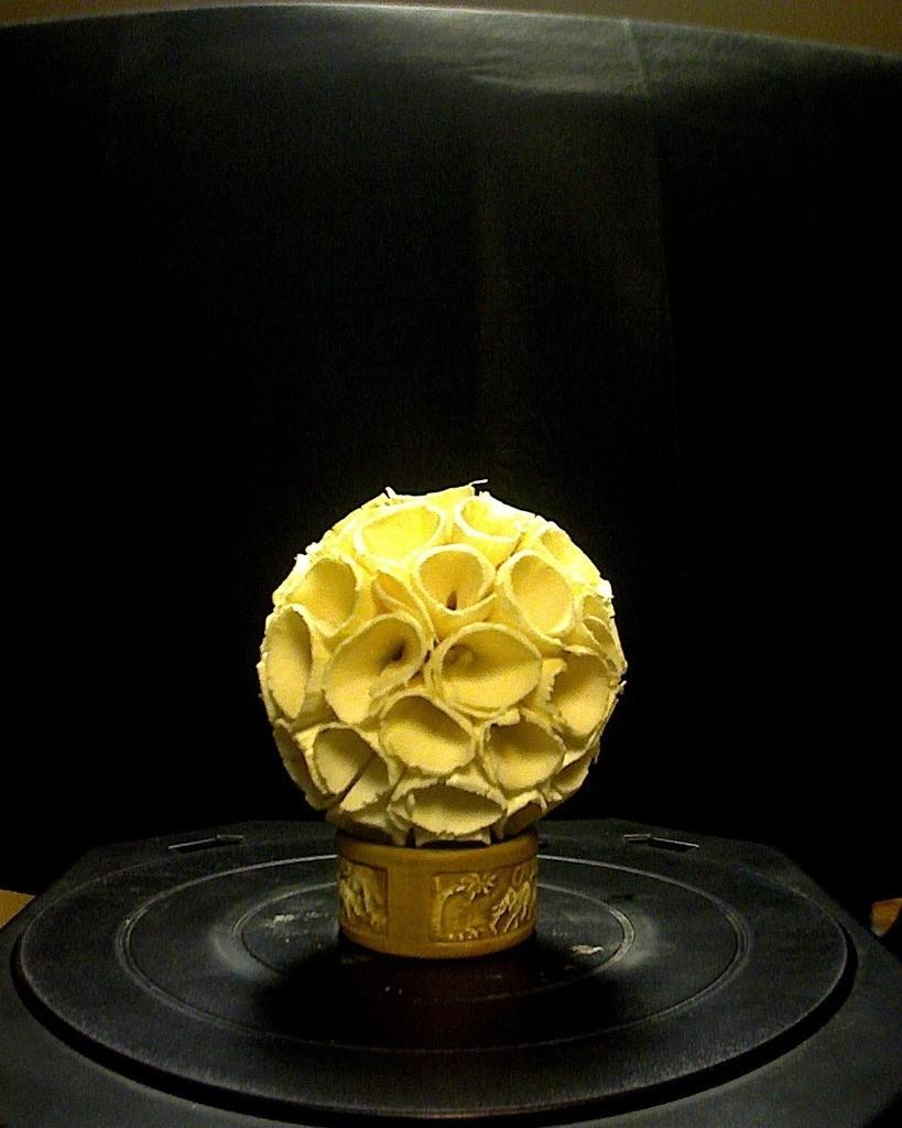 photo_display_large.jpg Download free STL file Curly Flower Scan • 3D printable model, ErnyCrazyPrinter