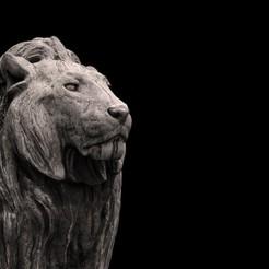 STL LION , baselrafat