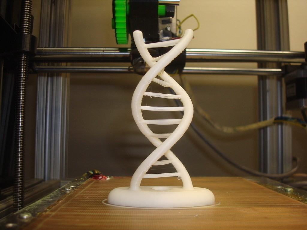 DSC02764_display_large_display_large.jpg Download free STL file Reprap Double Helix • 3D printer template, Kellywatchthestars