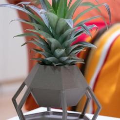 Télécharger STL Vase hexagonal, TheRa