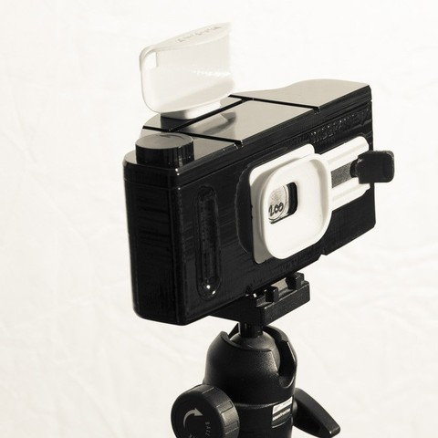 Free STL file WidePan X - Pinhole camera, aliregunhito