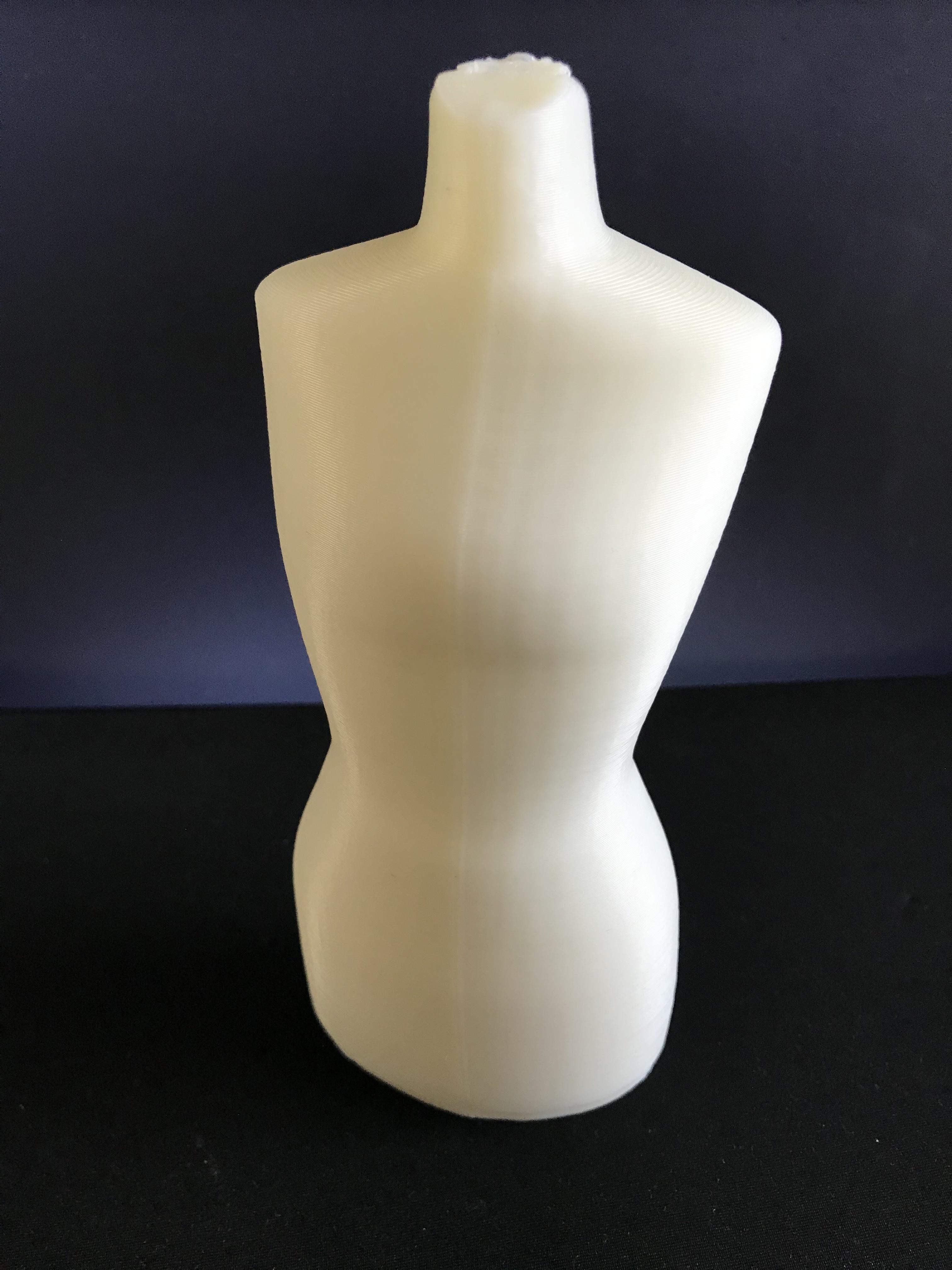 IMG_3499.jpg Download STL file Mannequin • 3D print model, ncatalasoriano