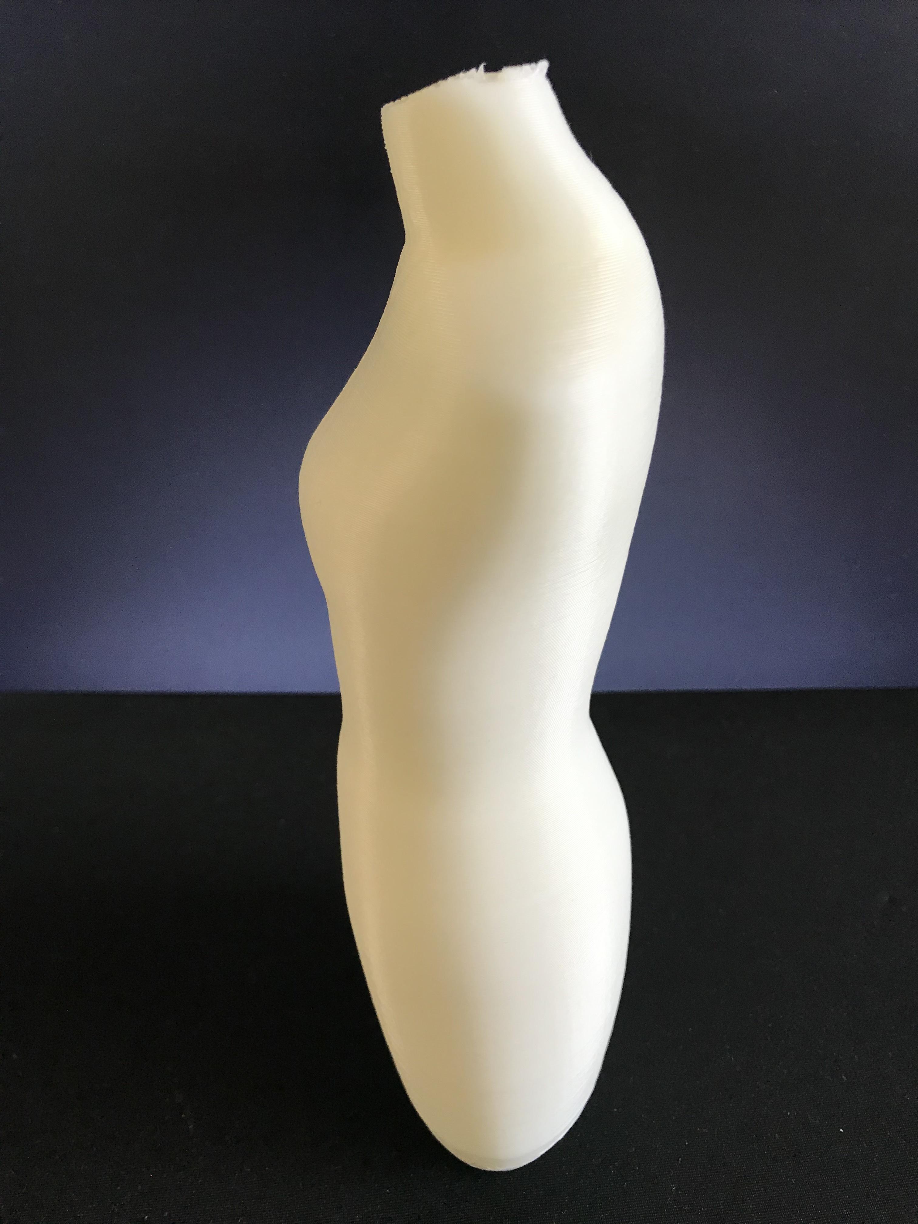 IMG_3500.jpg Download STL file Mannequin • 3D print model, ncatalasoriano