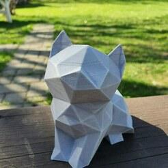 IMG_20200522_000157_318.jpg Télécharger fichier STL Petit chaton mignon et polyvalent • Modèle imprimable en 3D, EstudioAditivo