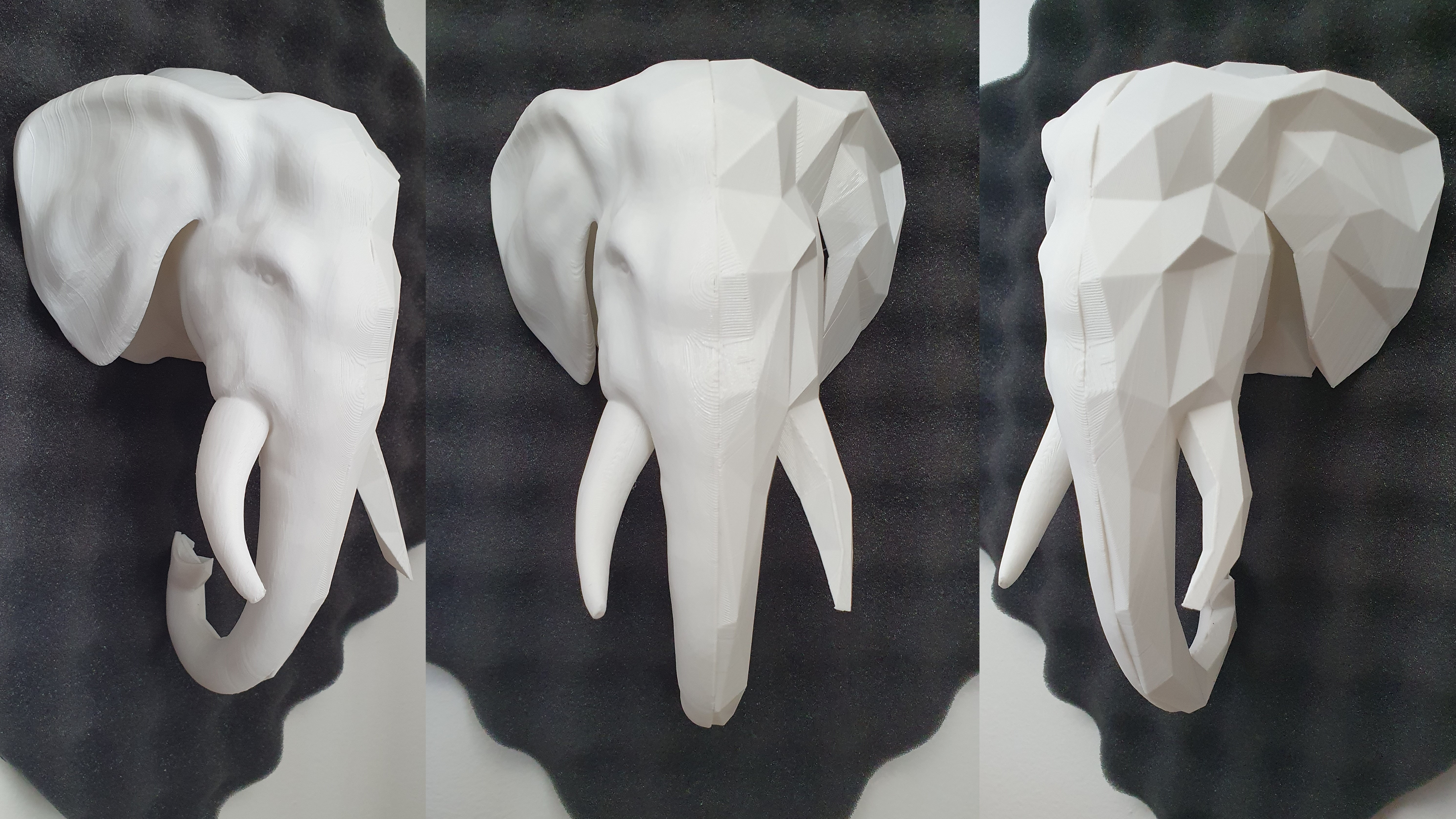 01_Elephat_Head.jpg Télécharger fichier 3MF Trophée de l'éléphant polyvalent moitié-moitié • Modèle pour impression 3D, Elwin_Alvarado