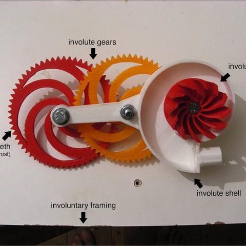 DSCN1518s_display_large.jpg Download free STL file Involute Blower • 3D print design, Azagal