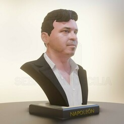 "Captura de pantalla 2020-12-22 033904.jpg Télécharger fichier STL Buste de Marcelo Gallardo ""Le Mannequin"" • Design imprimable en 3D, SebastianDecilia"