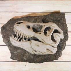 Download 3D printer designs skull fossil t-rex, todoimpresion3d