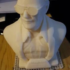 Free 3D printer model Stan Lee Memorial , AtomicSquirrel