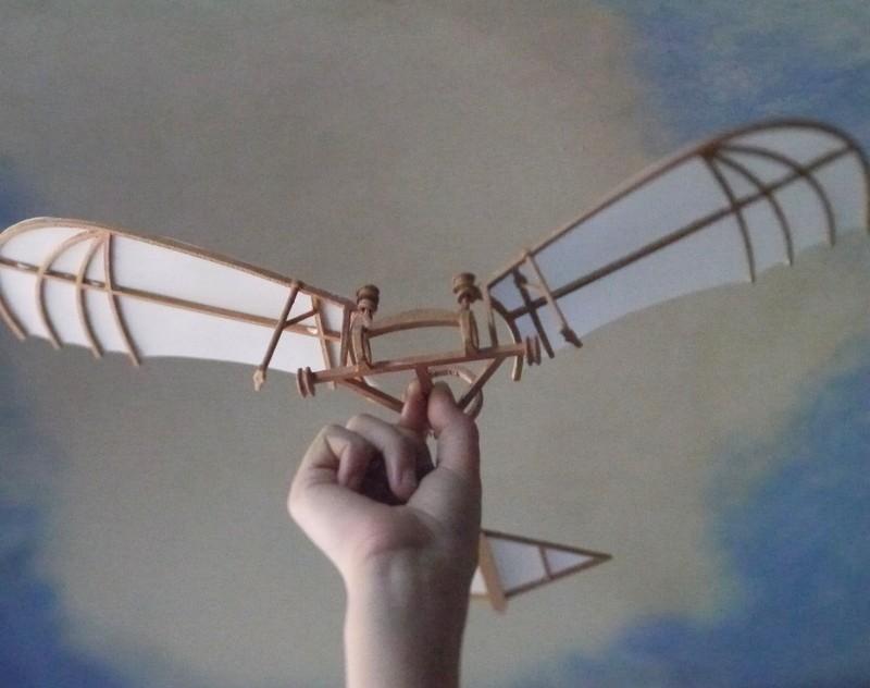 P1030214_display_large.jpg Download free STL file Leonardo Da Vinci - Ornithoper • Design to 3D print, Slagerqod