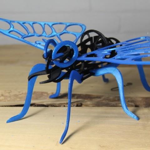 Descargar archivo 3D gratis Mothra, Lurgnarb