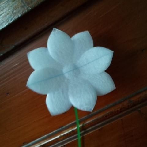 Télécharger fichier imprimante 3D gratuit fleurir, Laevalia