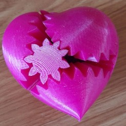 Download free STL file PLA Heart Gears for Replicator 2 • 3D printer model, Gaenarra
