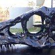 Descargar diseños 3D Esqueleto T-rex de bebé de tamaño natural - Parte 01/10, kenducula