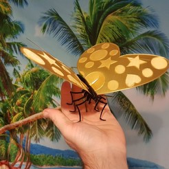 Free STL Butterfly kit, Xeontiger