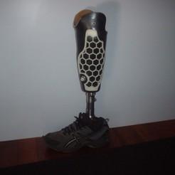 Download free STL files prosthetic hex leg cover, Ristrorg