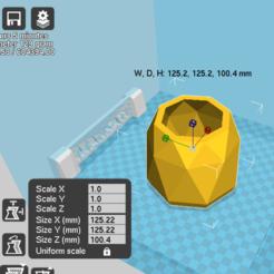 3D printing model lozi  geometric planter, zigsgroup